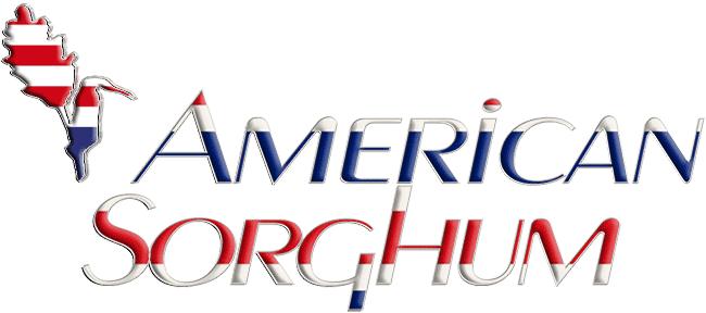 American Sorghum