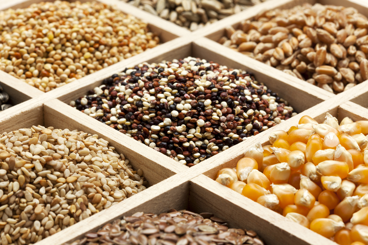 Whole Grains Foods Recipes